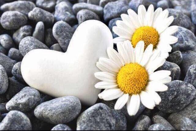 DesertRose,;,Heart,;,