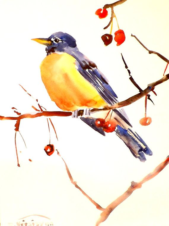 American Robin original watercolor painting 12 X 9 by ORIGINALONLY, $24.00