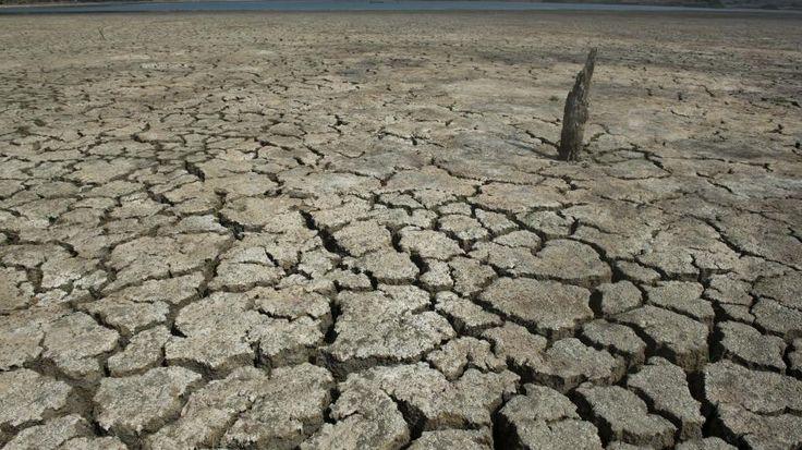 Les spécialistes mondiaux du climat ont brossé un tableau apocalyptique de la météo des prochaines décennies lors d'un congrès international, qui s'est conclu jeudi à Montréal. Au programme : sécheresses, inondations et élévations du niveau des océans....