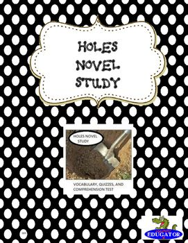 essay on holes the book