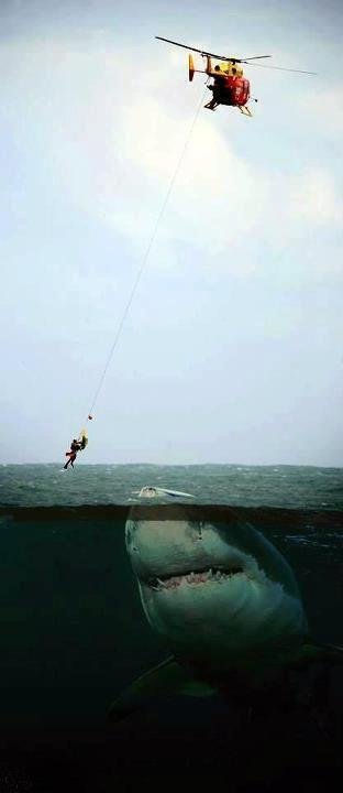 Awesome, but I wouldn't trade places with the guy being rescued!