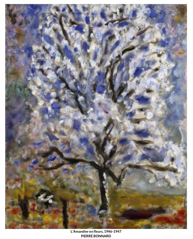 Pierre Bonnard, peintre du bonheur - Passeur dArts