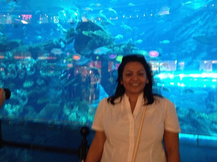 Beautiful aquarium in the Dubai Mall...