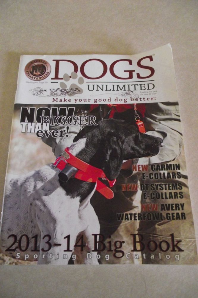 sporting dog journal 2013