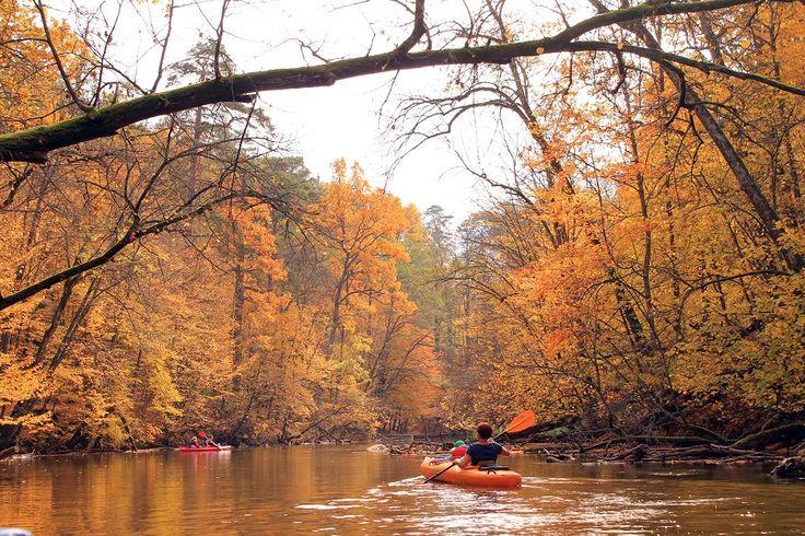 Rzeka Krutynia jesienią.  www.it.mragowo.pl