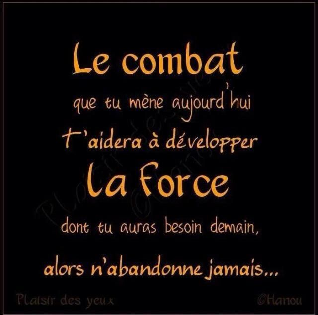 le combat phrases en citations bibliques francais de demain citations ...