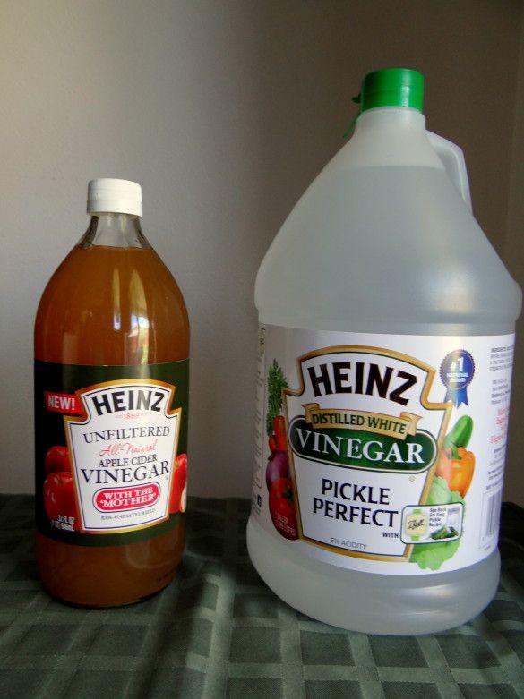 1000 Ideas About Heinz Apple Cider Vinegar On Pinterest