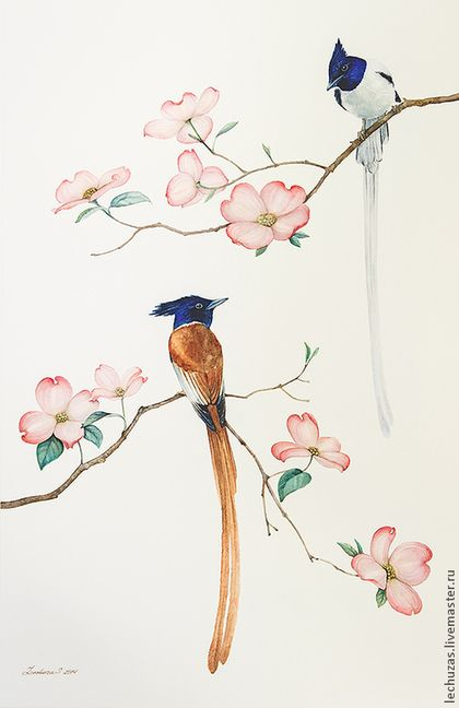 Birds and flowers. Pic.2. Traditional art ( watercolor). Prof. paper: Canson. Svetlana Markina (LechuzaS). Size: 24cm*42cm