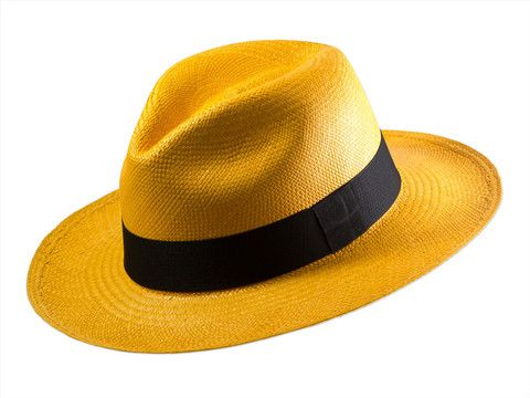 Fedora Autumn! Enjoy our colour festival for an endless Summer. Check out our full collection on www.mindita.nl
