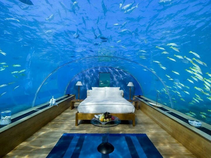 124 best images about themed bedrooms on pinterest guest for Ocean bed meaning