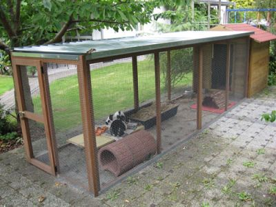 This is certainly an option for our rabbits. I am fairly certain I could build this.