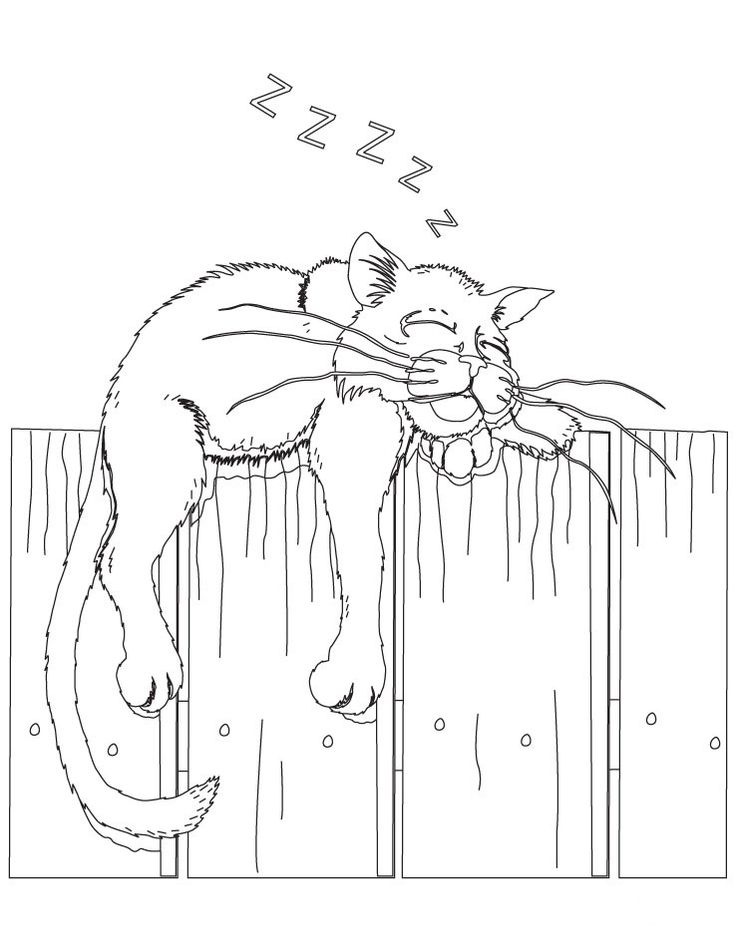 Cat on a Fence Coloring Page  (738 x 954)