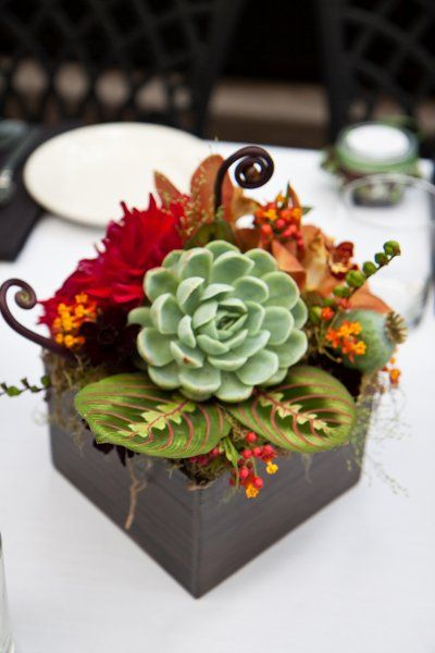 Succulent wedding ideas a collection of to try