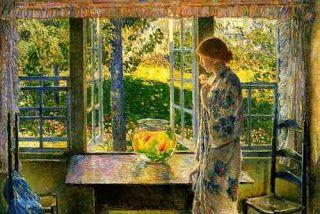 Meu Rumo Editorial: Uma janela para o jardim