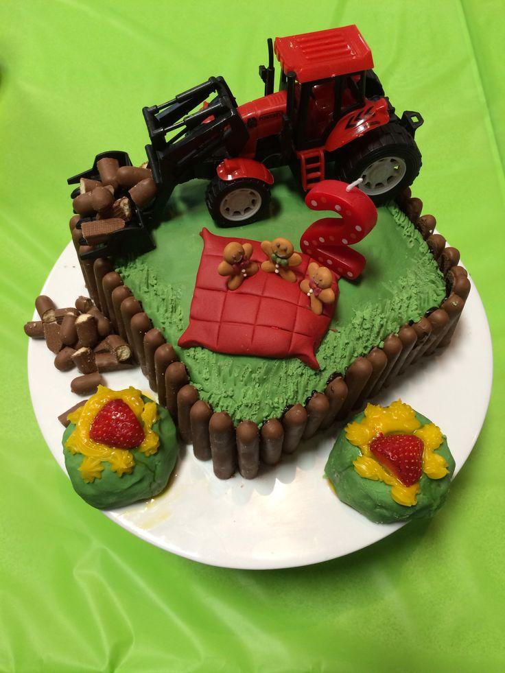 192 best Farm Animals Cows Horses Chickens etc Cookies