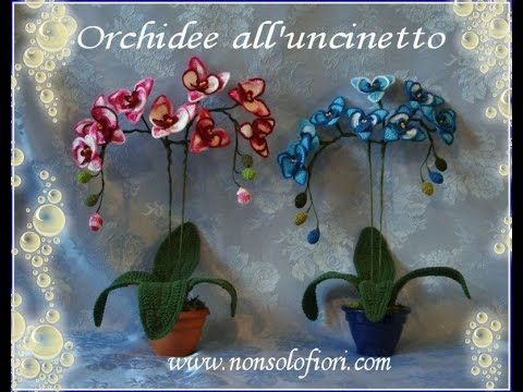 Galleria fotografica. Le mie orchidee realizzate all'uncinetto. Lo schema è presente nel mio secondo manuale https://youtu.be/--nSwVA_k4Y
