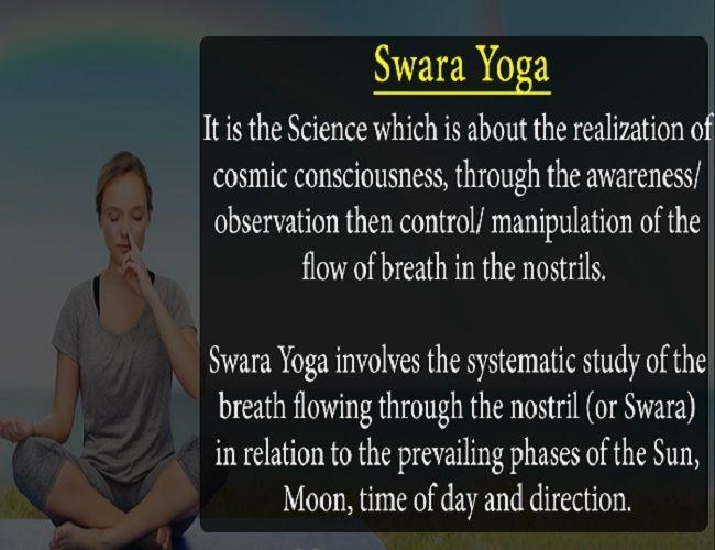 The Three Main Yogic Nadis Yoga Practice Blog Swara Yoga Cosmic Consciousness Physiology