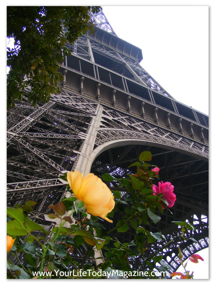 Travel Ideas - Eiffel Tower with Roses