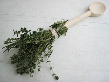 The Herb Brush: A Great Summer BBQ Tool by Adam Perry Lang - using kitchen twine and a long wooden spoon, tie on your favorite herbs and dip in oil to baste your favorite meat on the grill. CLEVER!