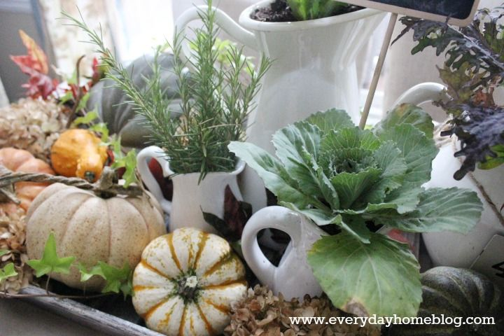 Hometalk :: Creating an Autumn-Filled Tray