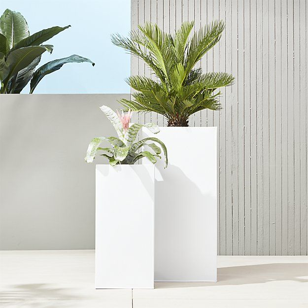 like these idea to stagger in middle of space with plants and product