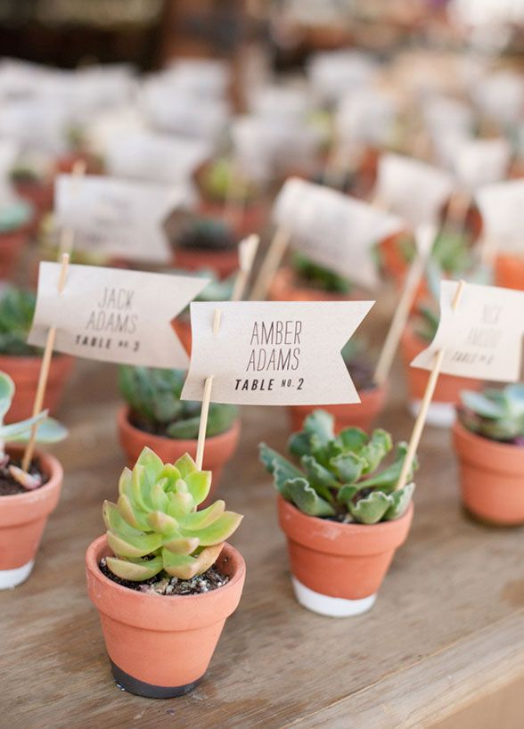 Succulents make for a sweet escort card idea and double as a wedding favor your guests can take home.