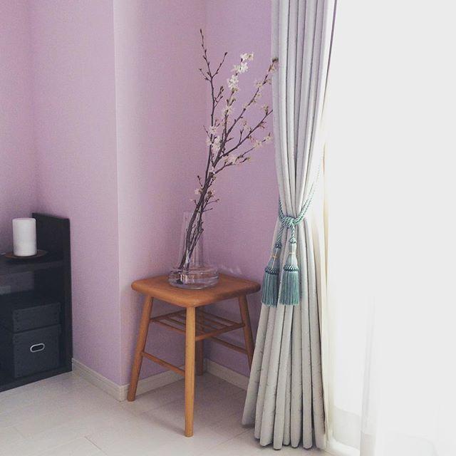 【mimosa_0122】さんのInstagramをピンしています。 《・ 桜の花 ・ 別角度からの方がうまく撮れてた気がするので、前回と同じ様な写真ですが、アップしちゃいます。 ・ #桜 #ホルムガード #モモナチュラル #ラベンダー色の壁紙 #啓翁桜 #無印良品 #カーテン #ニトリ》