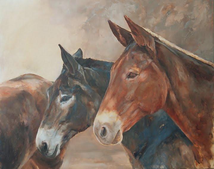 182 best pack mules images on Pinterest | Donkeys, Turkey ...