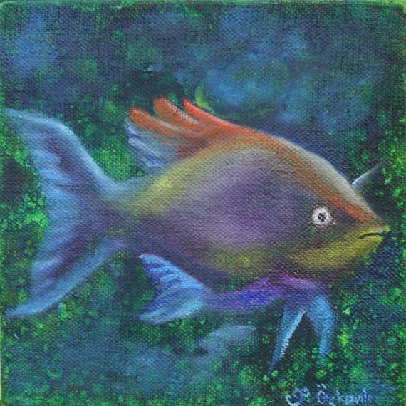6x6 inches oil painting on canvas pretty fish