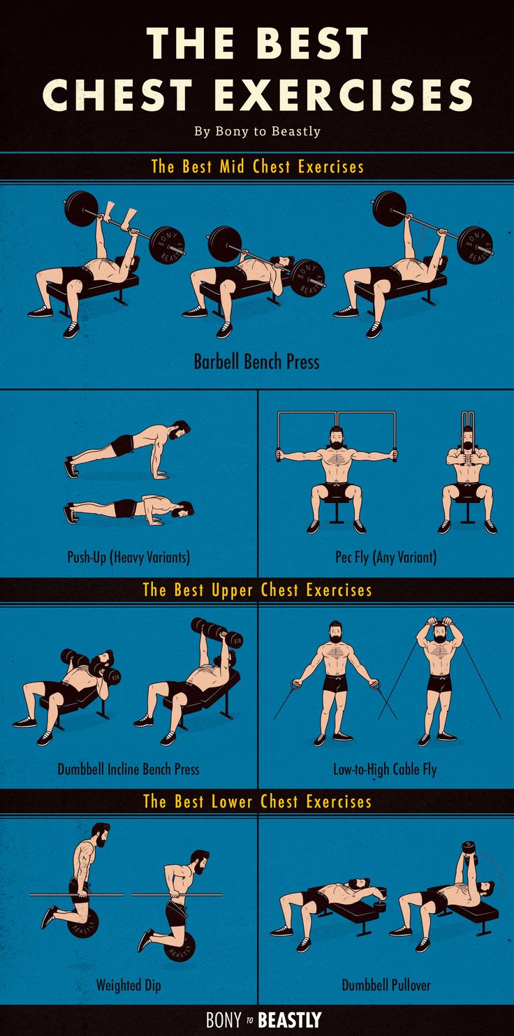 An Illustrated Chart Of The Best Chest Exercises Best Chest Workout Lower Chest Workout