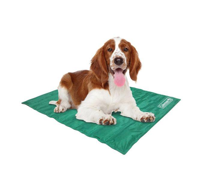 "Coleman Comfort Cooling Gel Pet Pad Mat in Medium 24""x30"", For Medium Pets https://www.amazon.com/dp/B00N5K1OR0?m=A1WRMR2UE5PIS8&ref_=v_sp_detail_page"