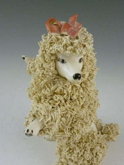 1000 Images About Spaghetti Poodles On Pinterest