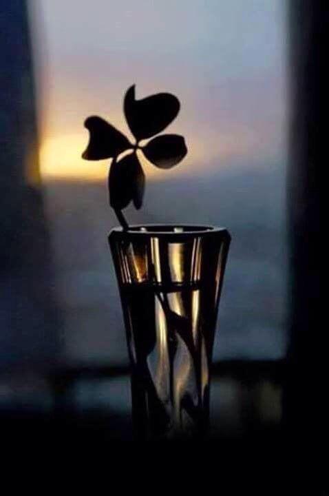 Quando cala il buio e il silenzio, tutto ciò che devi vedere e sentire è dentro di te. Buona Serata a te..mondo mio
