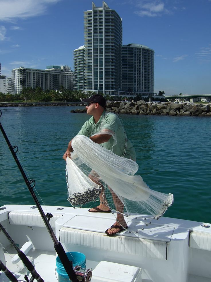 Miami charter provide awesome boats for fishing trip and all yachts are relaxable and enjoyable and having a A/C with clean bathrooms and kitchens and our seasoned crews are educated and also drug and alcohol tested  so that your trip will safe . For more details visit our website- http://www.miamicharterboat.com/