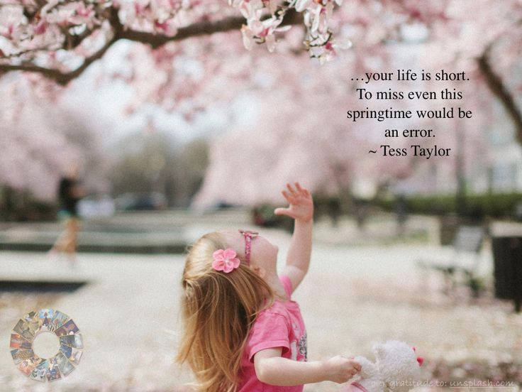 …your life is short. To miss even this springtime would be an error. ~ Tess Taylor