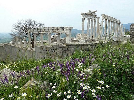 Exploring Ancient Pergamum & Ephesus - İzmir, Türkiye