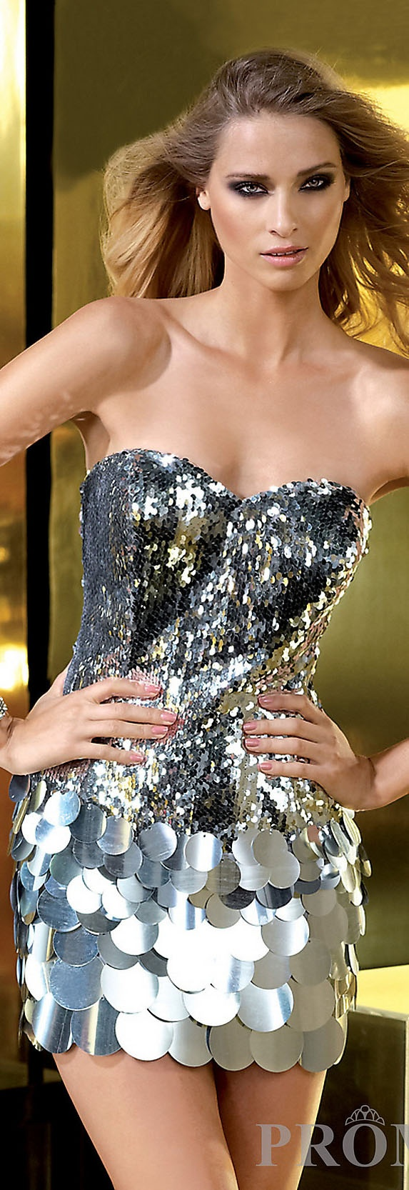 Lady Gaga Black and Silver Sequin Dress