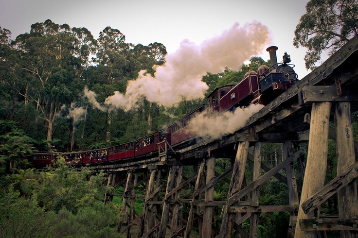 Puffing Billy in the Dandenong Ranges, Victoria, a highlight of our Australia & the Ghan rail tour http://www.greatrail.com/tours/australia-and-the-ghan-.aspx