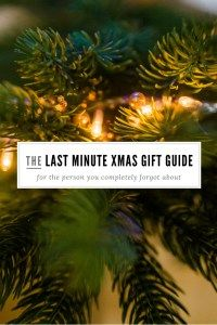 Last Minute Christmas Gift Guide – She. Alexandra