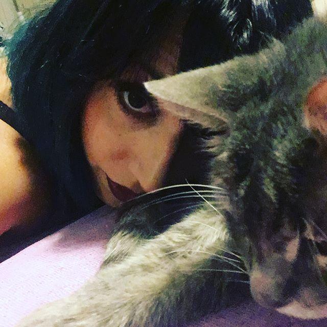 Amore mio.. arrivato il primo freddo stai sempre con me... #gatti #cat #catstagram  #ilovemycat #instagramcats #cutecat #mycat #cat_gram #cats_of_instagram #amoremio #follow4follow #fotooftheday #foto #ioetepersempre #ioete #bellissimo  Via  https://www.instagram.com/p/BY1zWwVATgZ/    Cute Dresses, Tops, Shoes, Jewelry & Clothing for Women - Shop now!