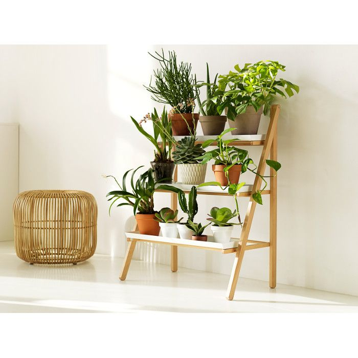 Gröna trappan - Blomtrappa, växttrappa i klassisk design med plats för många växter på liten yta