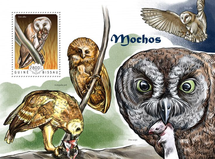 Post stamp Guinea-Bissau GB 14607 b	Owls (Tyto alba)