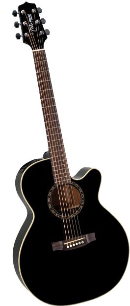 My guitar! EG481SCX 6 String Acoustic / Electric Guitar - G Series NEX Series - Takamine Guitars