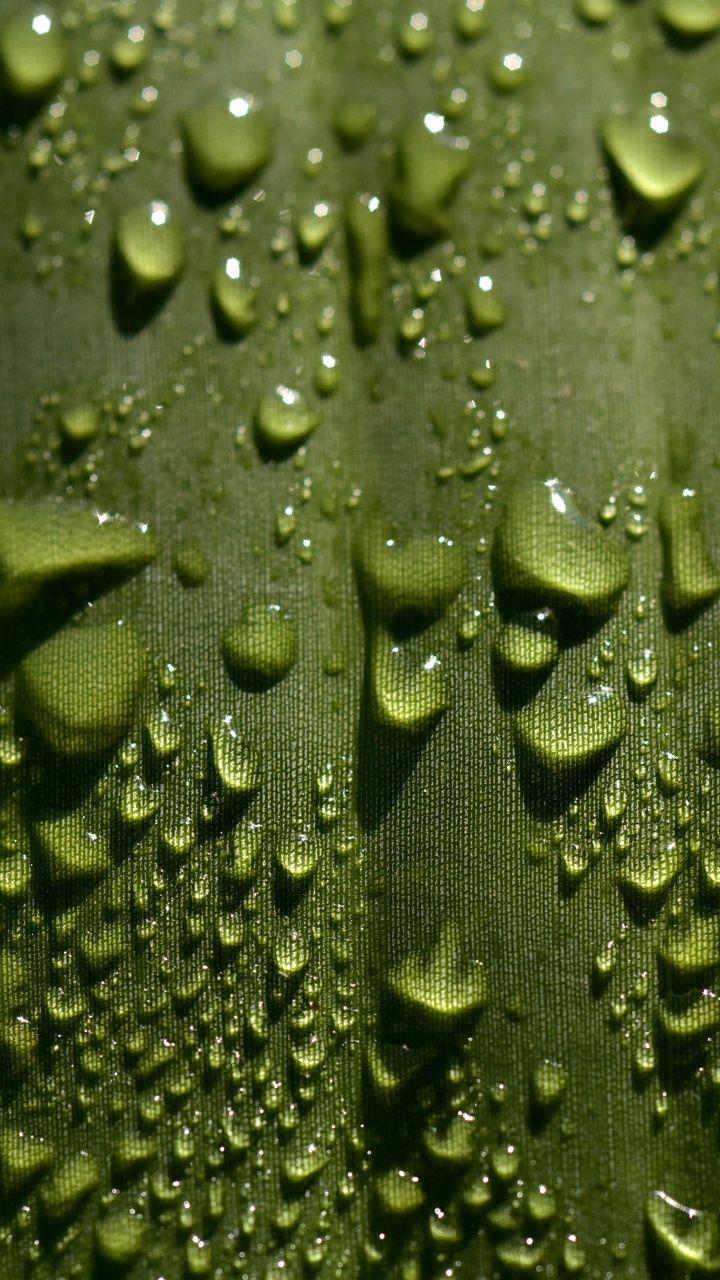 Leaf Droplets Close Up Water Drops 720x1280 Wallpaper