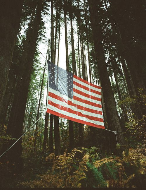 american flag + camping + woods + america.  home - drip cult - a blog about men's fashion, food, music, art, & lifestyle