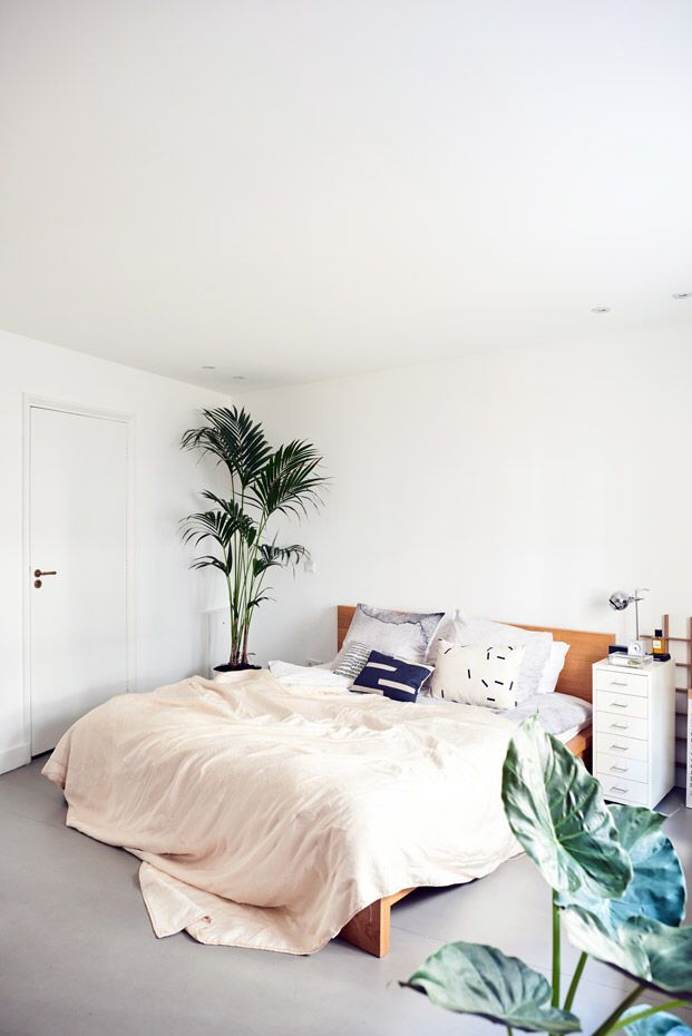 Minimal bedroom + hues of brown wood and green plants
