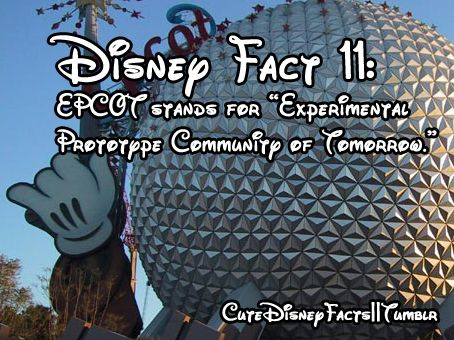 "CoolDisneyFacts (((I debunk this myth. This is what it originally stood for in the early years of the park [EPCOT was going to be LIVED IN as a ""community""]. After deciding not to use it as a place to live, WDW decided to remove the abbreviation. Now Cast Members will make up different meanings for it.)))"