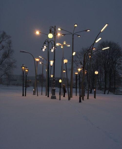 urlof:  Sonja Vordermaier, Streetlampforest, a collection of 30 european streetlamps from different origins and times, Mangfallpark Rosenheim, talking place at the horticultural show Rosenheim 2010.