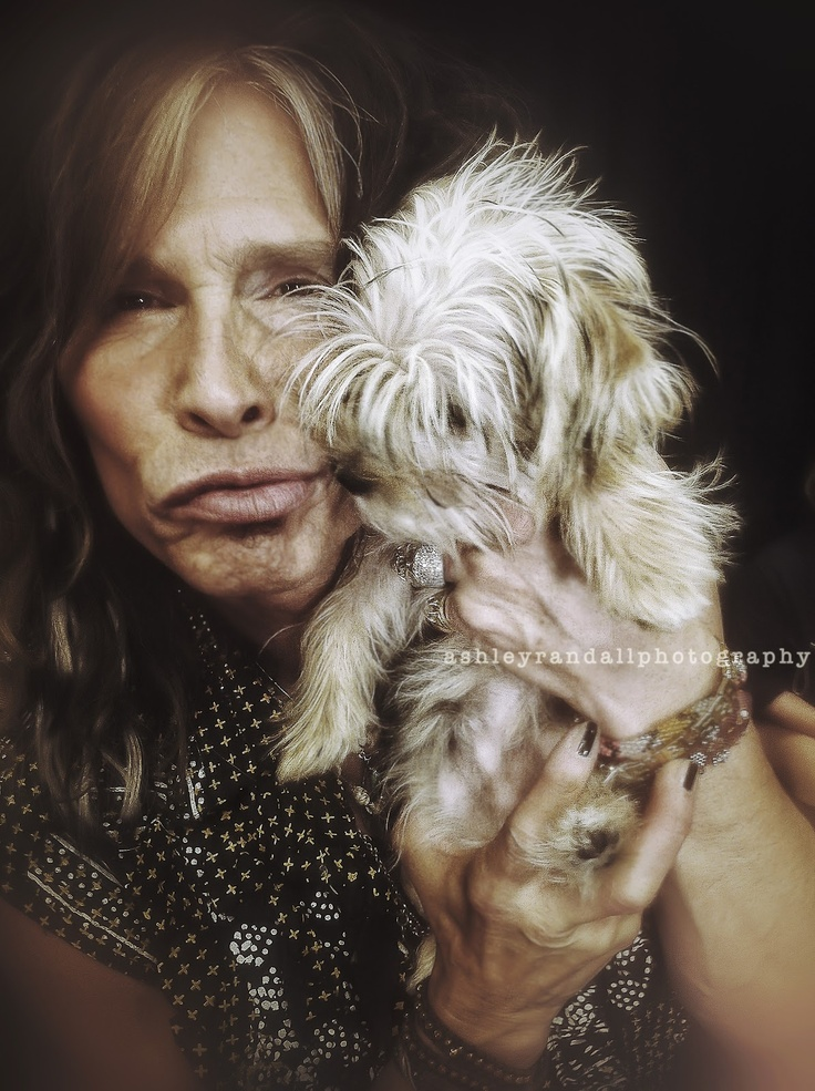 Steven Tyler and Yorkie..The Photogramps