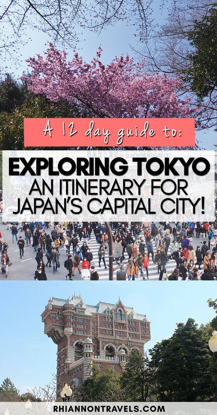 Best Japan With Kids Kyoto Tokyo Images On Pinterest Asia - 12 things to see and do in tokyo